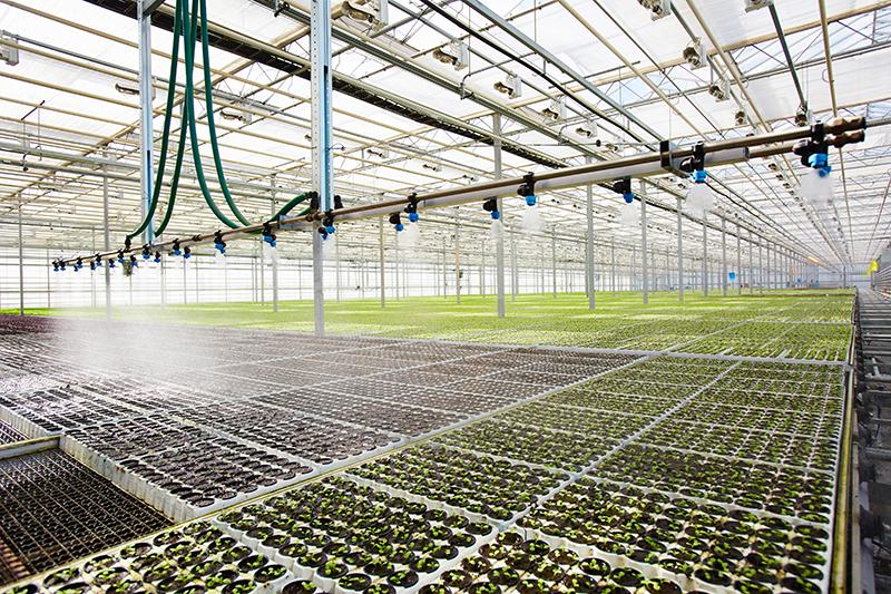imagen de unas plantaciones con sistema de regadío haciendo alusión a la hidratación del suelo agrícola